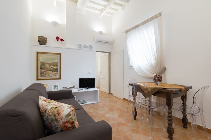 Lovely and quiet flat in S.Spirito with courtyard