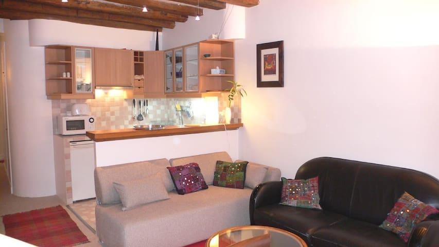 Comfy One Bedroom Odéon - Paris - Apartment