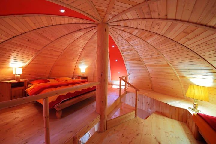 Art Apartments Minic / Mushroom A