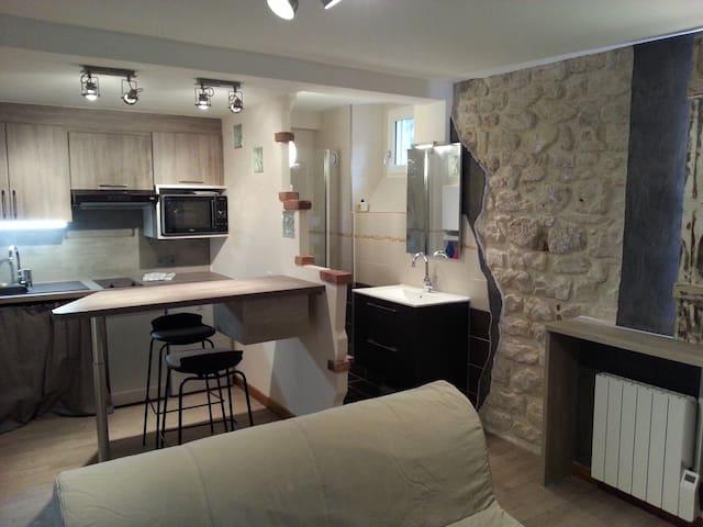 巴黎五区地铁JUSSIEU 正对面 走路不到一分钟 全新STUDIO - Paris - Haus