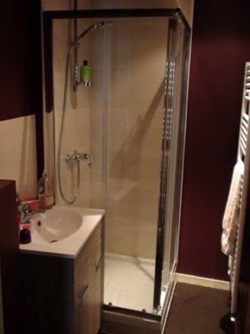 Une salle d'eau et un WC en suite