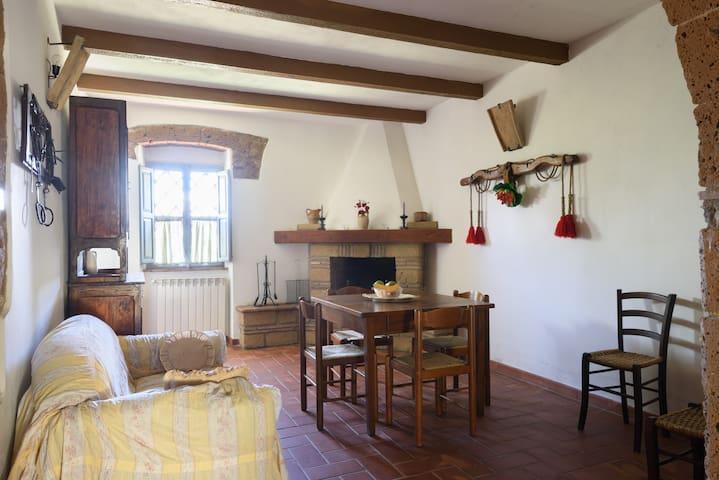 Agriturismo Carbonaio: La caciaia - Sorano - Apartemen