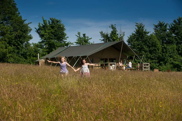 Daisy safari tent, Cuckoo Down Farm