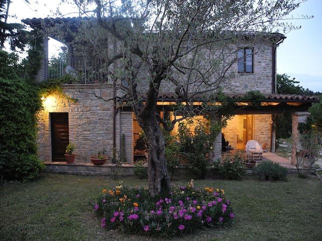 Casale rustico molto accogliente - Castelplanio  - Daire