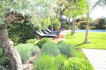 Cannes quiet villa, 2 miles beach & FILM FESTIVAL