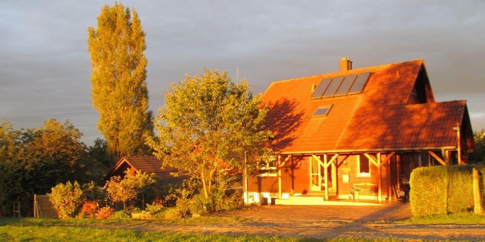 Einfamilienhaus in Rheinfelden-OT - Rheinfelden