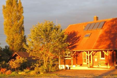 Einfamilienhaus in Rheinfelden-OT - Haus
