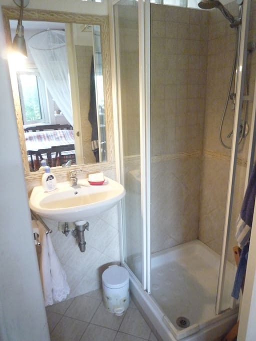 the bathroom with the shower - il bagno con doccia