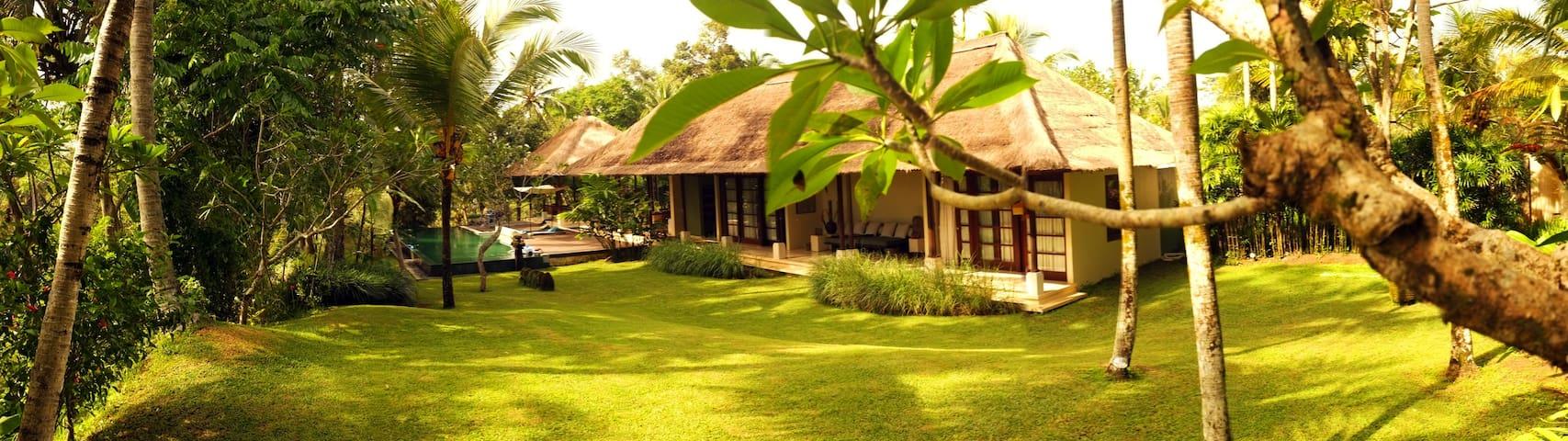 Villa Naga, spacious luxury villa in Payogan, Ubud