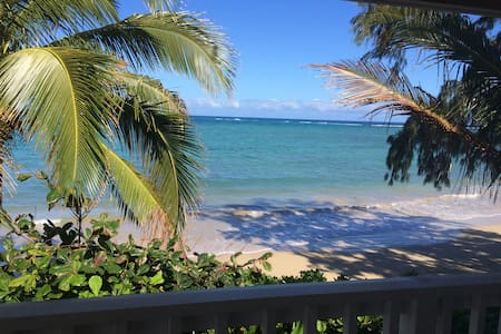 Awesome sandy beachfront 2b/1b. - Hauula