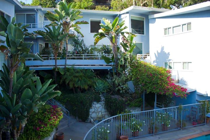Tropical Sunset Blvd. Suite