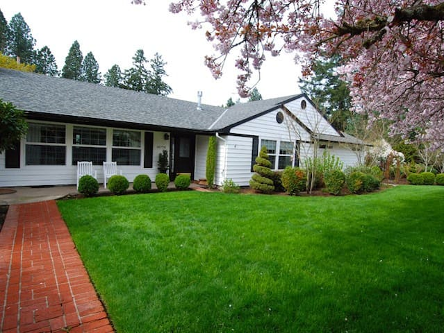 Large, well maintained front yard