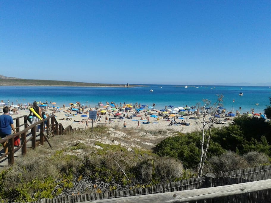 """La splendida spiaggia della """"Pelosa"""""""