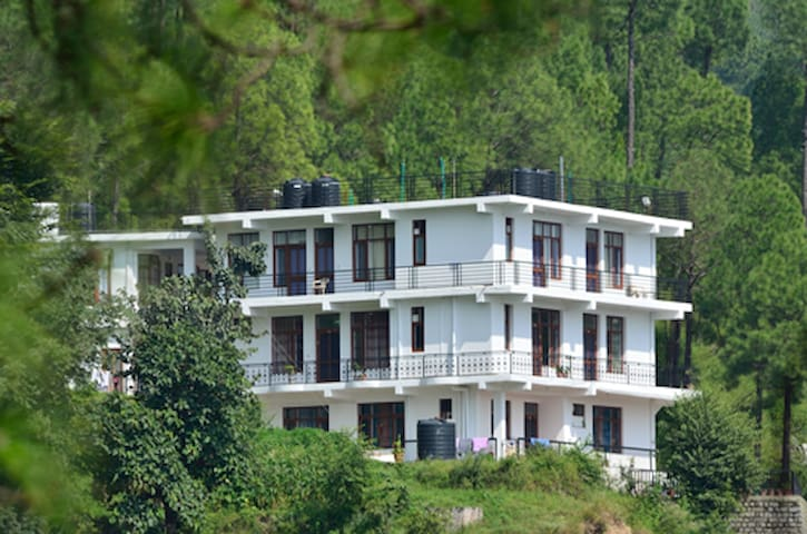 Luxury Rooms (Room Only) - Kasauli - Bed & Breakfast