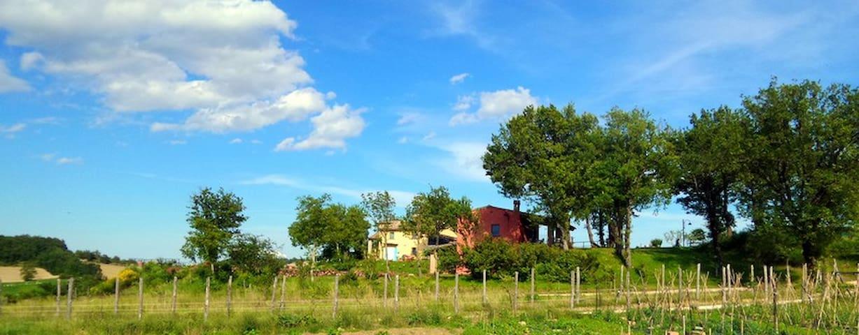Farmholiday  Il Posto delle Viole - Cagli - Apartment