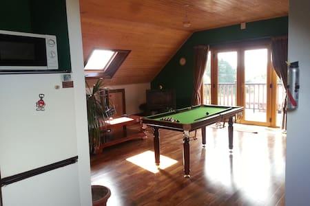 Spacious apt,balcony,sauna - claremorris - Loft