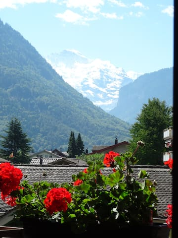 Great views of the Alps - Matten bei Interlaken