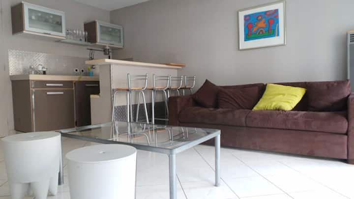 Cosy Apartment, T2 250m of station.