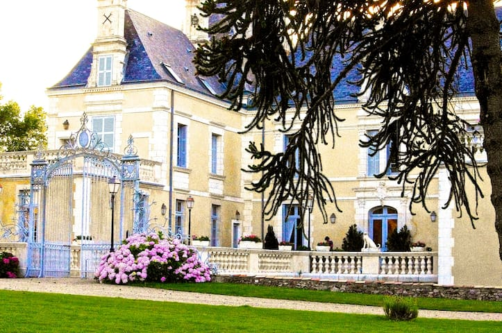 8 guests in beau chateau setting - Poitiers - Castle