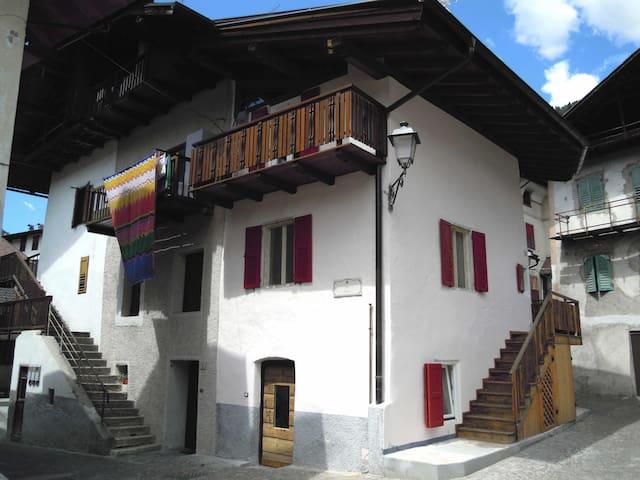 Traditional house in the Dolomites - Mezzano - บ้าน