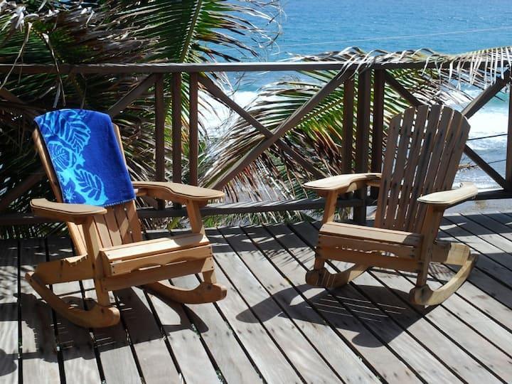 Apt on Soupbowl Surf Break Barbados
