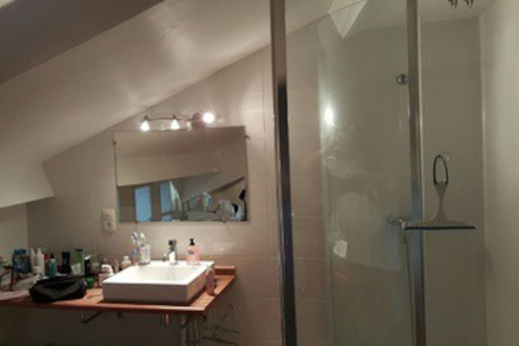 Salle de bain avec douche machine à laver sèche cheveux serviettes à disposition