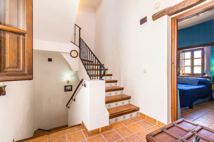 Charming andalusian house - Saleres - Casa