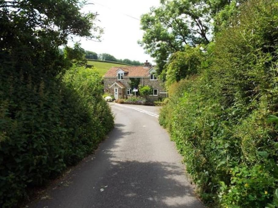 View down Northay Lane to our cottage.