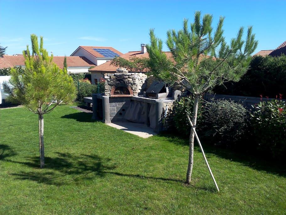 Ambiance sud de la France : pins maritimes,olivier...