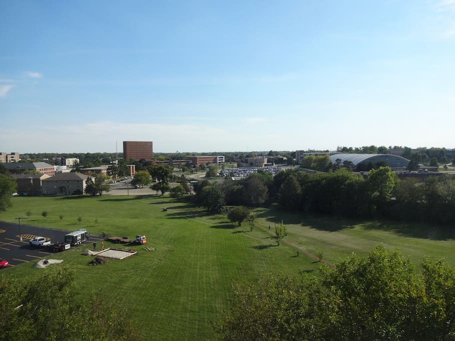 Gorgeous view of campus.