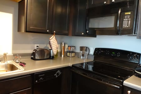 A Modern View & Updated Appliances - DeKalb