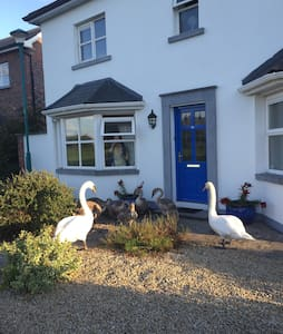 Beautiful double room to let - Portlaoise - Hus