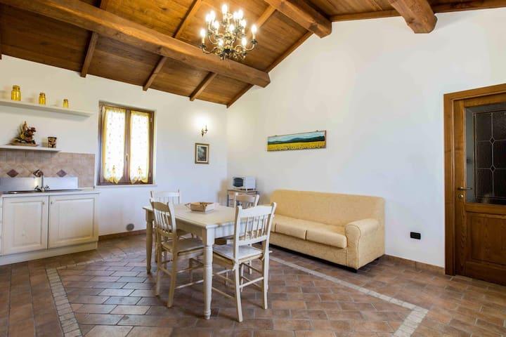 Holiday flats close to Assisi - Cannara - Apartment