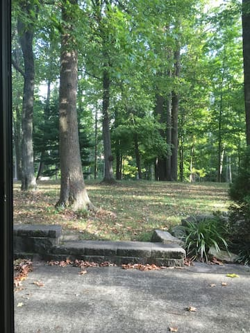 Wooded get-away btwn NYC and PHILLY- epic backyard - Monroe Township - Apartment