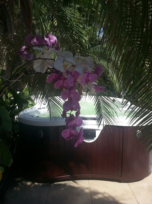 We invite our guests to enjoy our spa (for rent with Rico's permission, $15/hour Available until 9-30 PM)