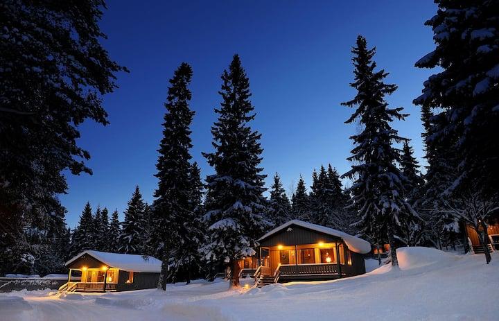 Brändön Lodge cabin