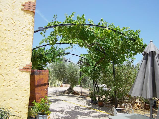 Cosy coastal rural S/C cottage  - La Aldea - Rumah