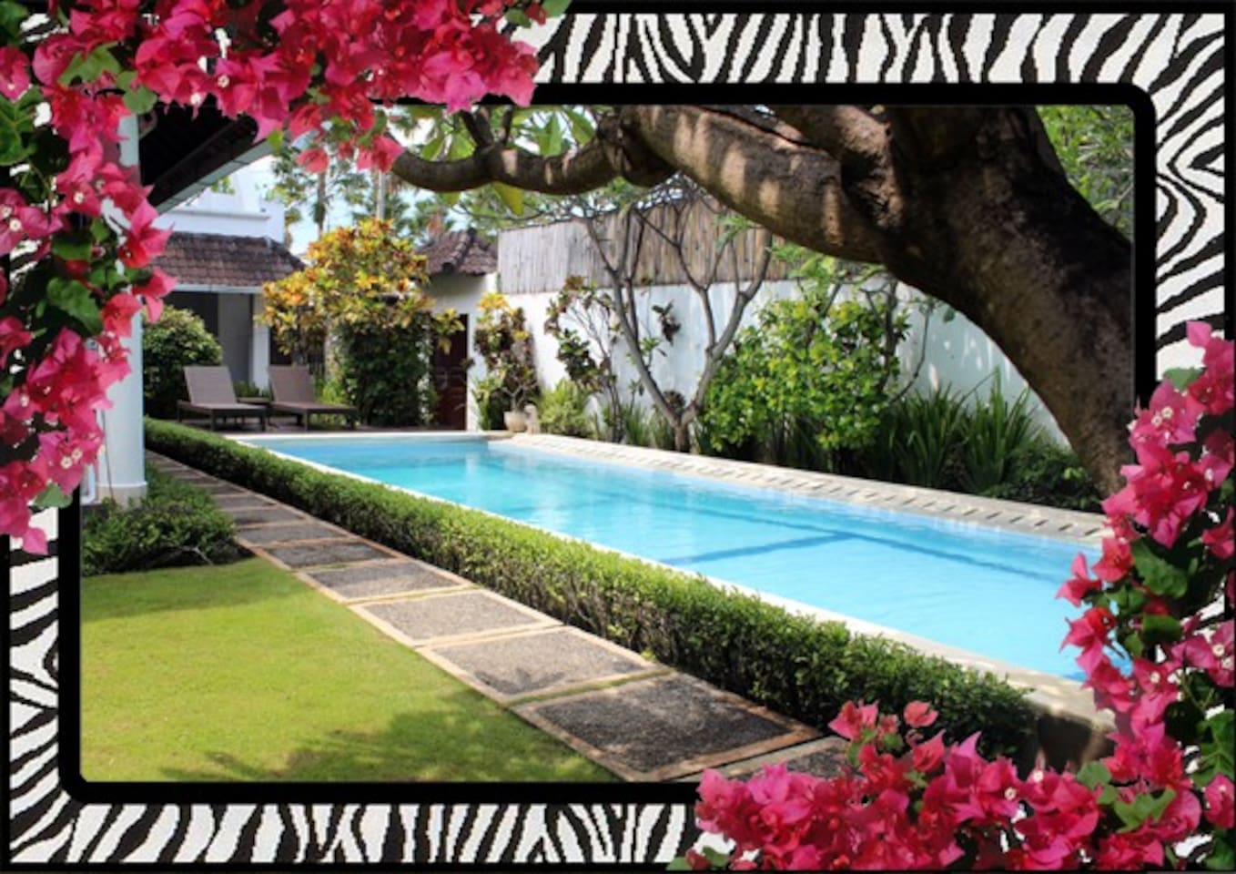 Villa Safari - manicured gardens and large lap pool