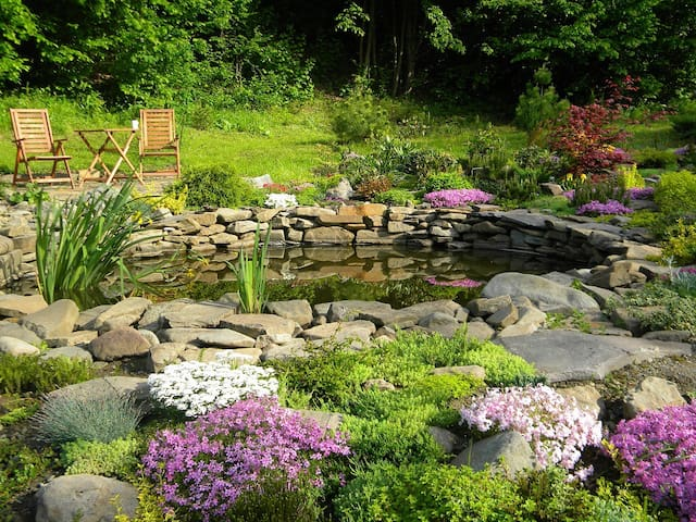 Sitting by the pond. May