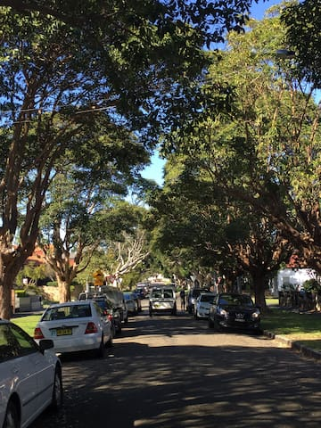 Gorgeous cathedral of tree lined street, very family friendly