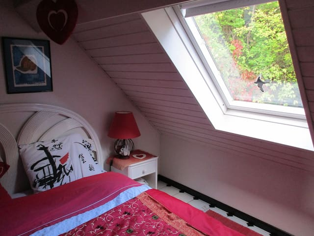 Studio romantique au centre Alsace. - Le Hohwald - House