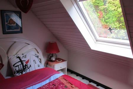 Studio romantique au centre Alsace. - Le Hohwald