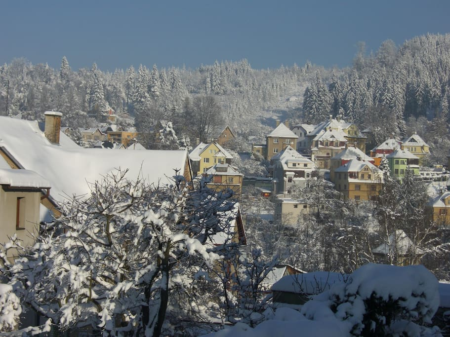 Winter view from the house of the surrounding villas and hills covered in pine forests.