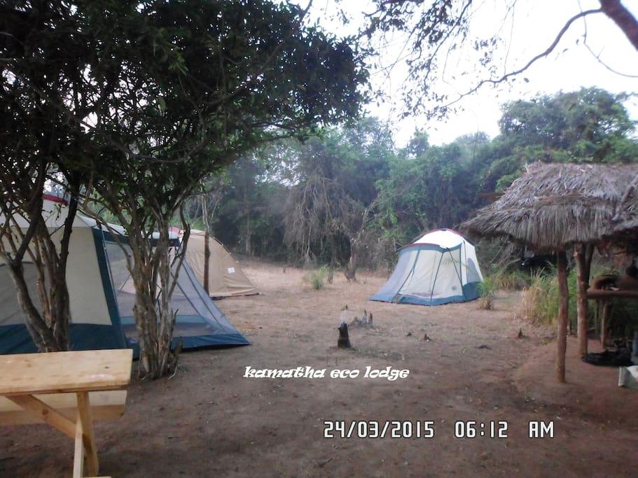 at camp site