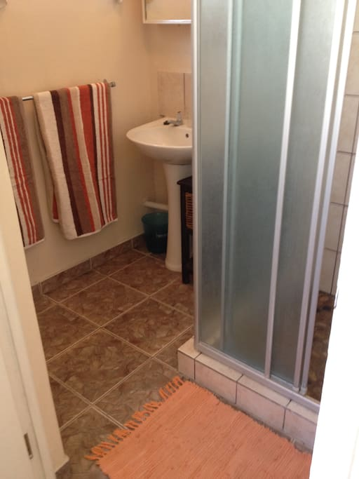 Bathroom with shower basin and toilet