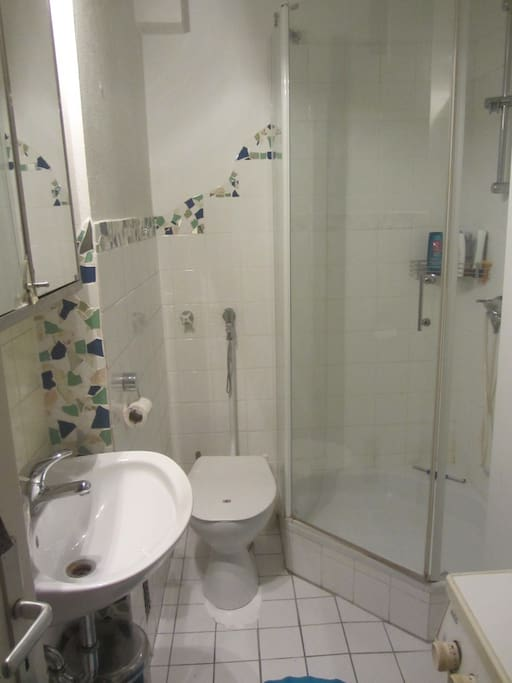 Bathroom includes washing machine and brand new shower head.