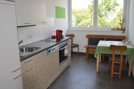 NEW 45m2 FLAT + AIRCONDITIONING! - Vienne - Appartement
