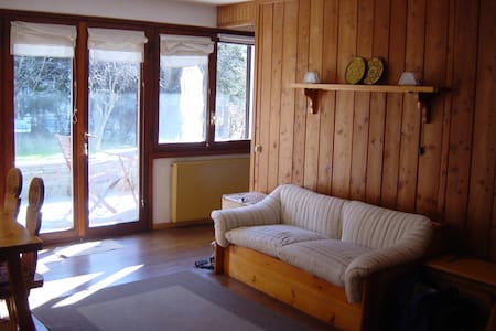 Charming apartment in Gressoney SJ - Gressoney-Saint-Jean