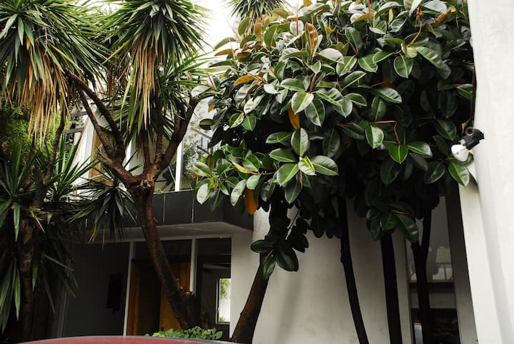 BEST 4BR 4 BH HOUSE IN S. MIGUEL CHAPULTEPEC