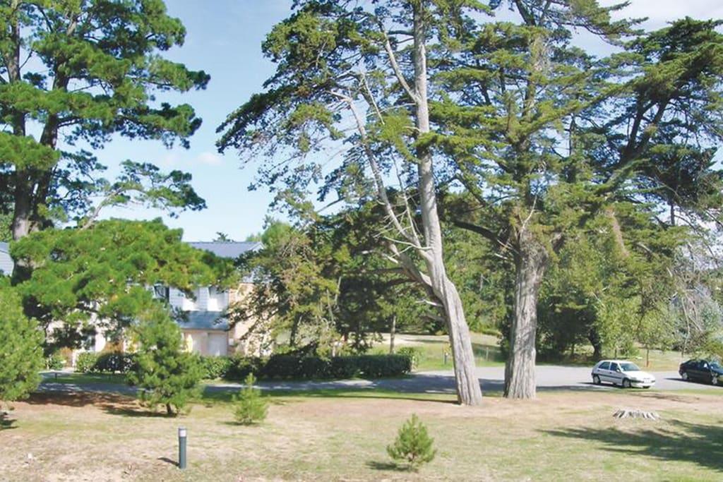 Parc ombragé avec de grandes pelouses et parkings privatifs